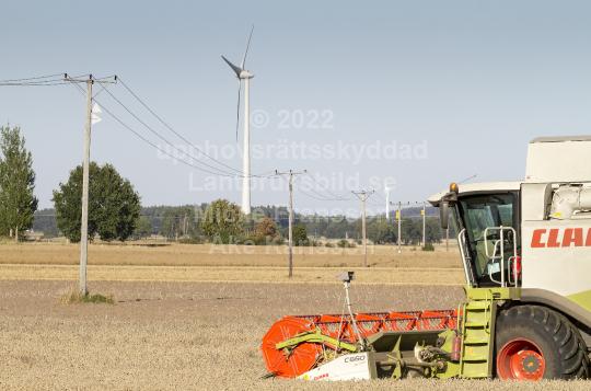 skog1301
