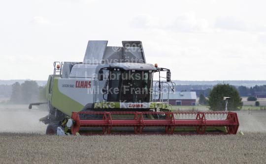skog201115