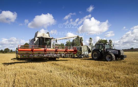 skog201120