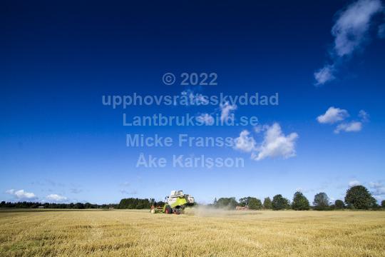 skog201121